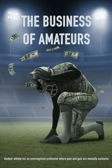 The Business of Amateurs