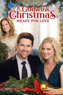 A Godwink Christmas: Meant for Love
