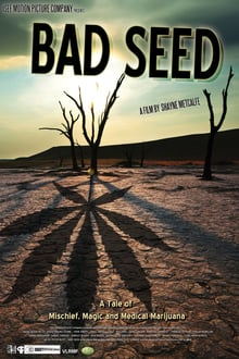 Bad Seed: A Tale of Mischief, Magic and Medical Marijuana
