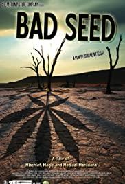 Bad Seed: A Tale of Mischief, Magic and Medical Marijuana