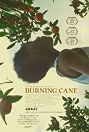 Burning Cane