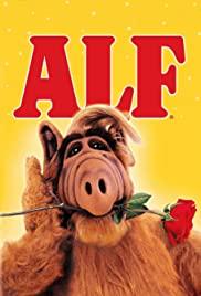 ALF 1×1
