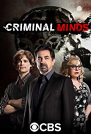 Criminal Minds S14E03