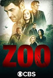 Zoo 1×1