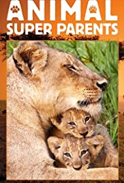 Animal Super Parents 1×1 : Going It Alone