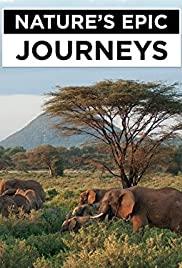 Nature's Epic Journeys S01E02