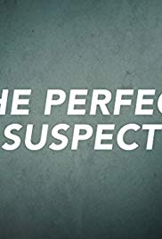 The Perfect Suspect 1×4